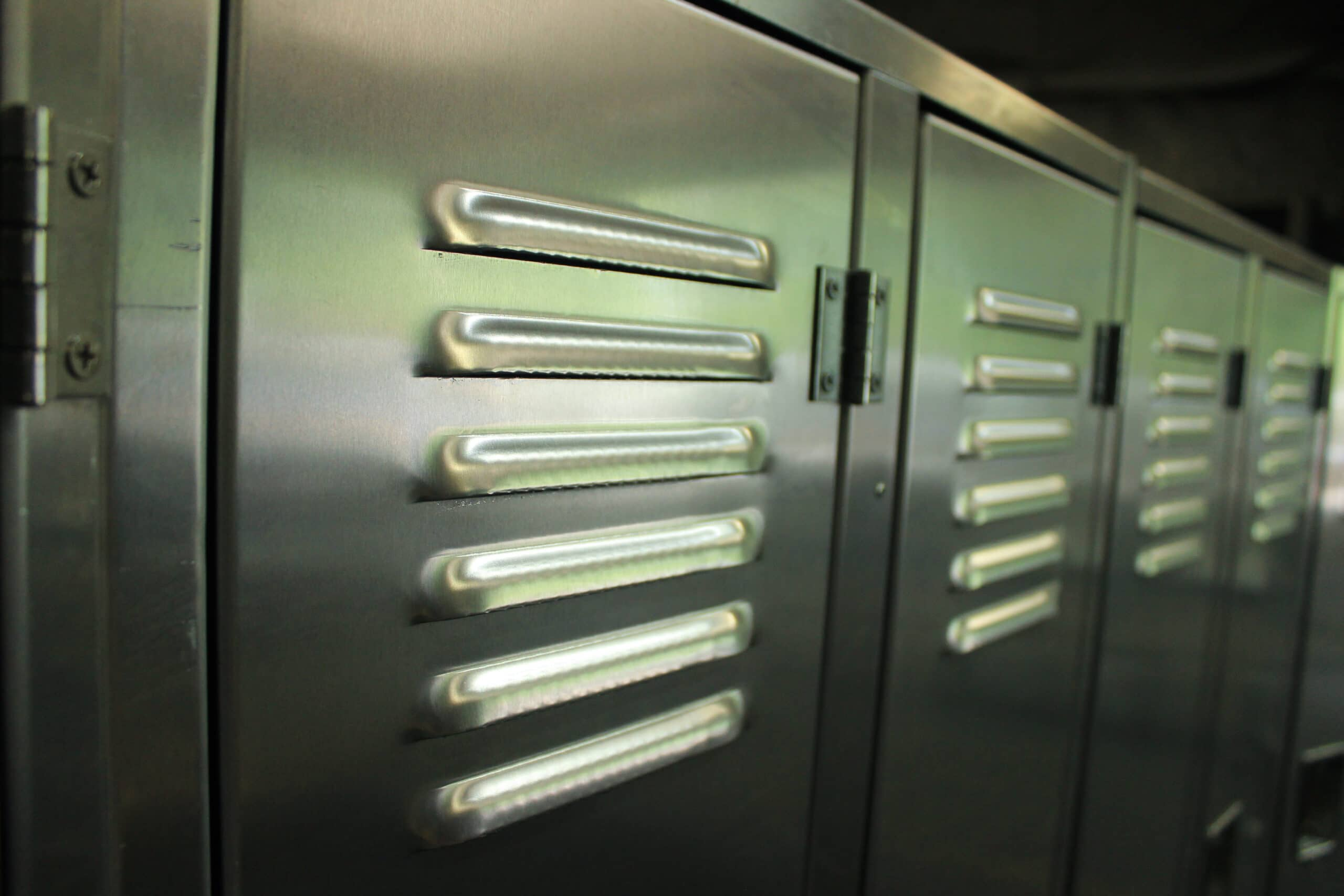 Rich results on Google's SERP when searching for 'aluminum locker louvers'